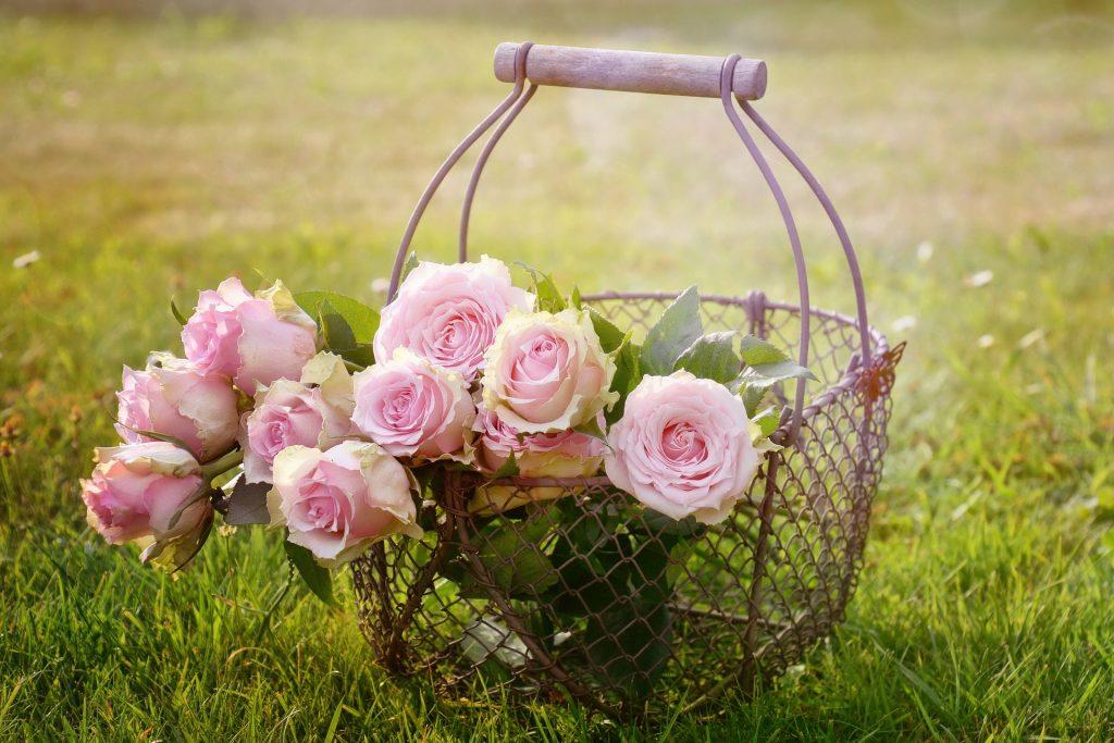 rosas y su simbolismo